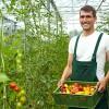 """Lavoro, Coldiretti: """"Record assunzioni in agricoltura"""" (+5,6%)"""