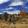 La promozione del nostro territorio alpino passa attraverso la cultura della pace