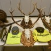 Duplice azione antibracconaggio in Valsugana e Val di Non: sequestrati trofei e armi modificate