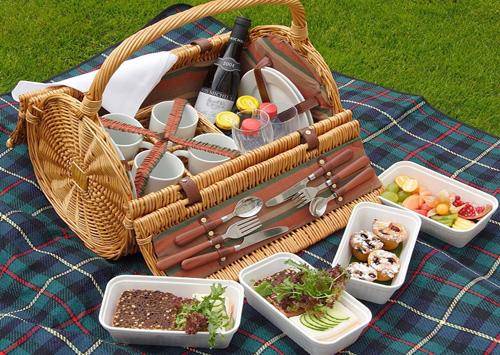 picnic-12