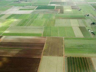campI_agricoli