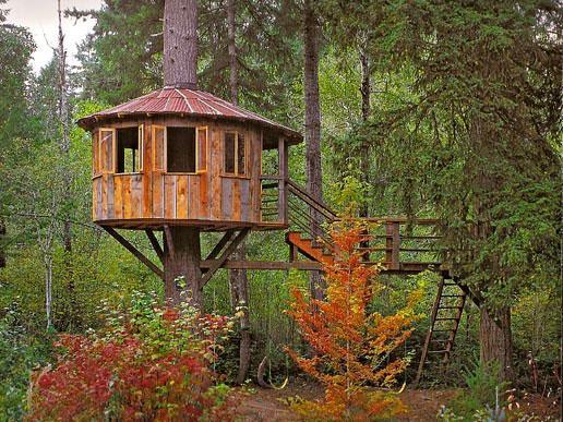 Costruisci la tua capanna sull albero concorso per i - Costruisci casa ...