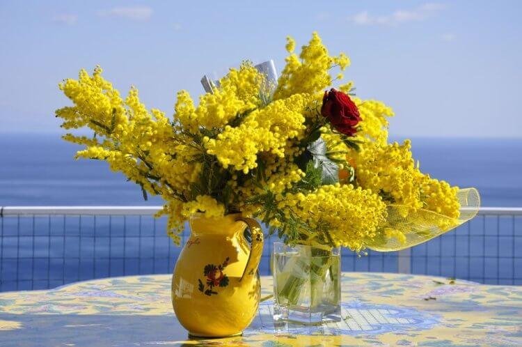 8-marzo-la-Festa-delle-Donne-si-celebra-anche-con-le-mimose