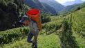 Fondi per agricoltori, imprese e privati dal GAL del Trentino Orientale: al via gli incontri nelle Valli (LE DATE)