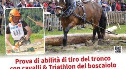 Boskavai 2017, ritorna nel weekend a Imèr l'evento con cavalli e prove di abilità