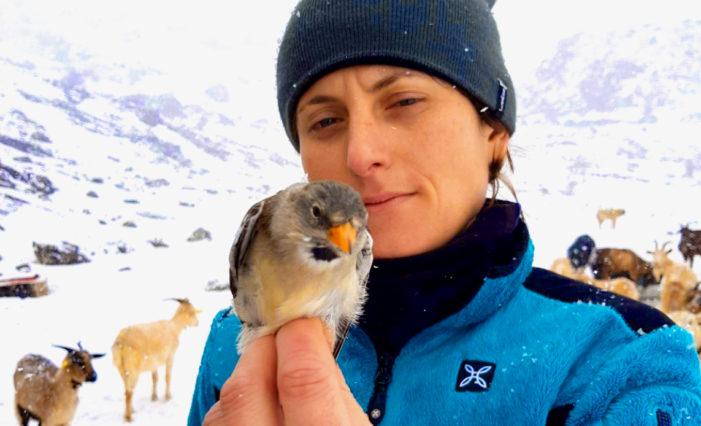 Chiara Bettega e la sua Spagna, tra natura e ambiente: lasciando le Dolomiti per la Cordigliera
