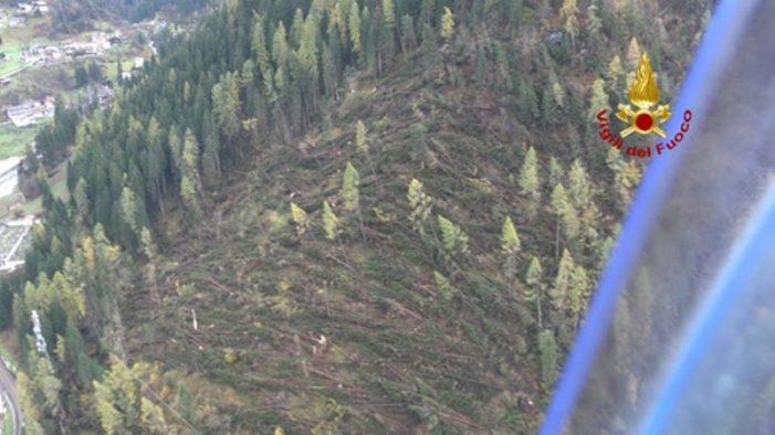 NordEst, Vicepremier Di Maio: caduti 8 milioni di tonnellate alberi